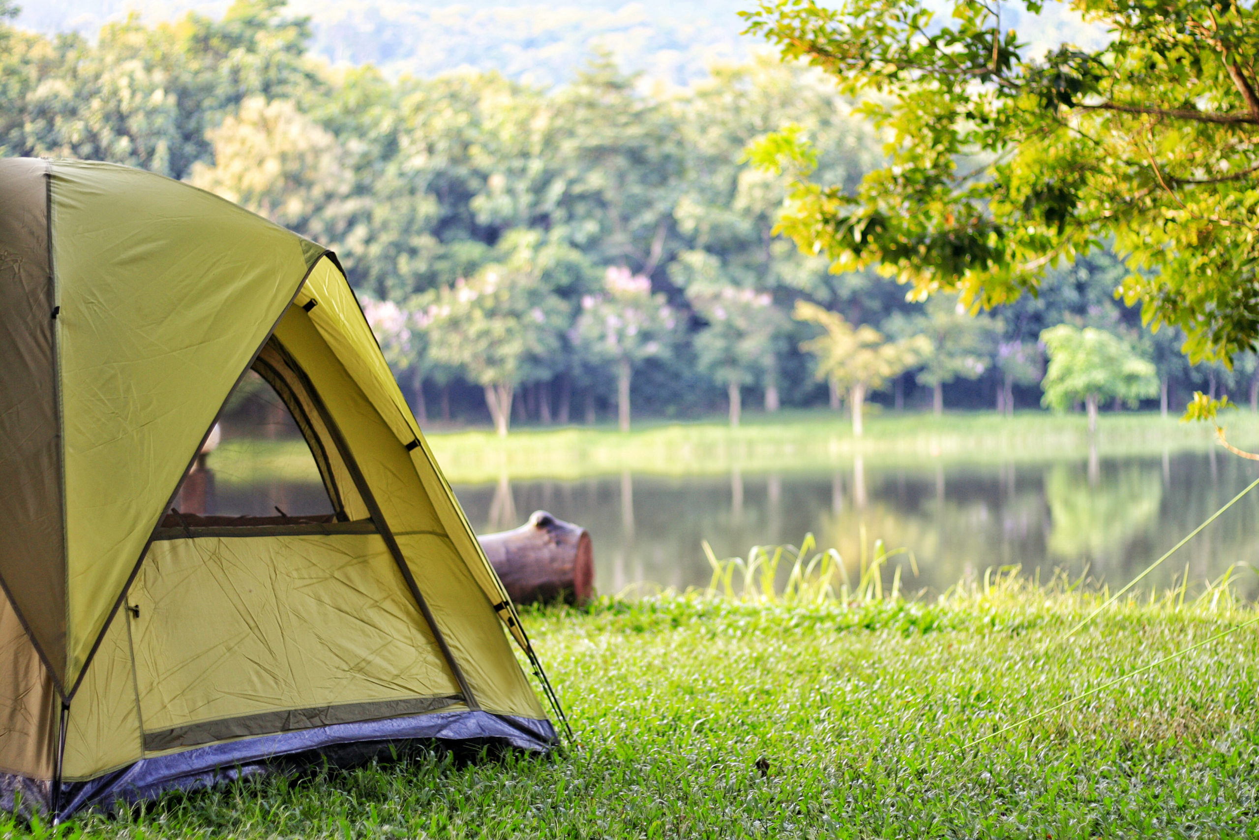 Campsite reservations for BC Parks open on March 8